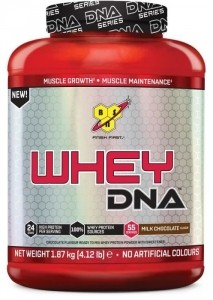 BSN Whey DNA Proteīni