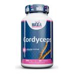 Haya Labs Cordyceps 500mg