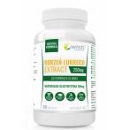 WISH Pharmaceutical Licorice Root Extract 250 mg