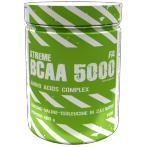 FA Nutrition BCAA 5000 Amino Acids